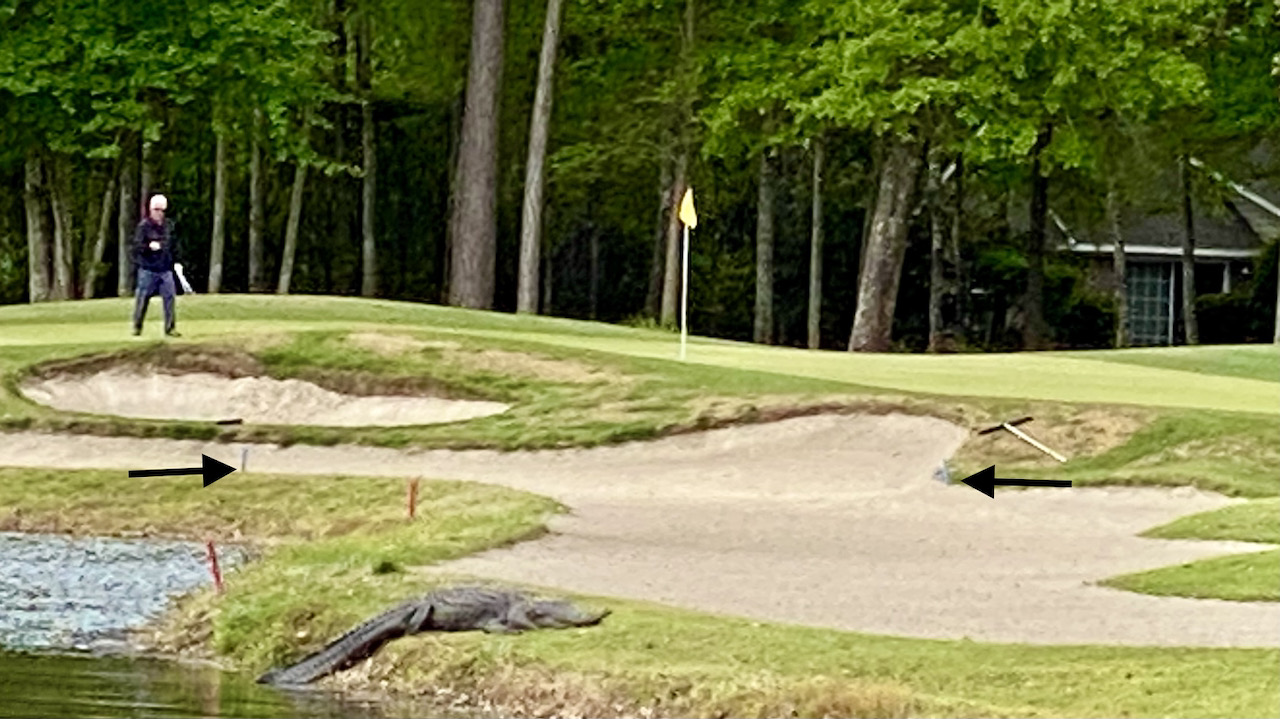What a Waste: Bunker Rules Outdated